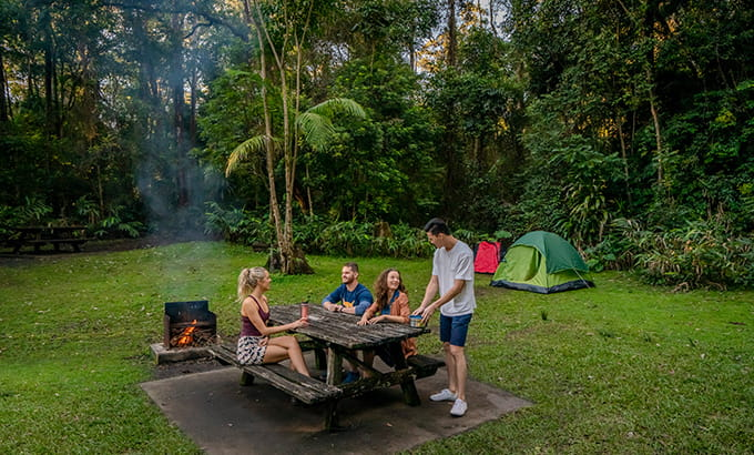 Sheepstation Creek campground at Border Ranges National Park. Photo credit: John Spencer © DPIE