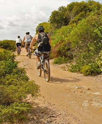 Bike riders on a mountain bike trail, Glenrock State Conservation Area. Photo: Shaun Sursok