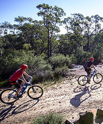 A group of mountain bikers on a guided tour through the Blue Mountains. Photo credit: Sam Carr © Blue Mountains Biking Adventures