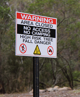 Closed area sign warning of tree fall danger at Cascades campground in Wadbilliga National Park. Photo: Lucy Morrell/DPIE