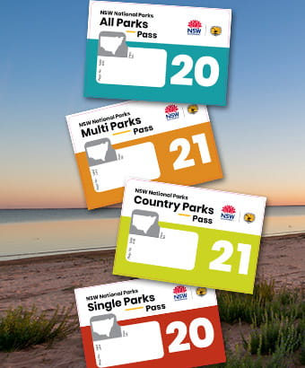 NSW National Parks annual pass stickers against Kinchega lake landscape. Photo: John Spencer/OEH
