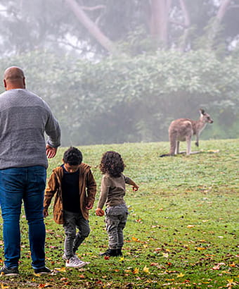 A man and three children watch kangaroos from a distance in Cattai National Park. Photo: John Spencer © DPIE
