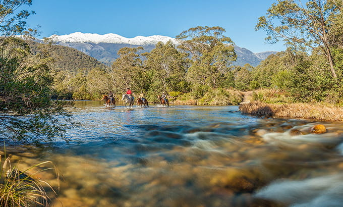 Horse riders cross the Swamp Plain River at Geehi, Snowy Mountains, Kosciuszko National Park. Photo: Murray Vanderveer/DPIE