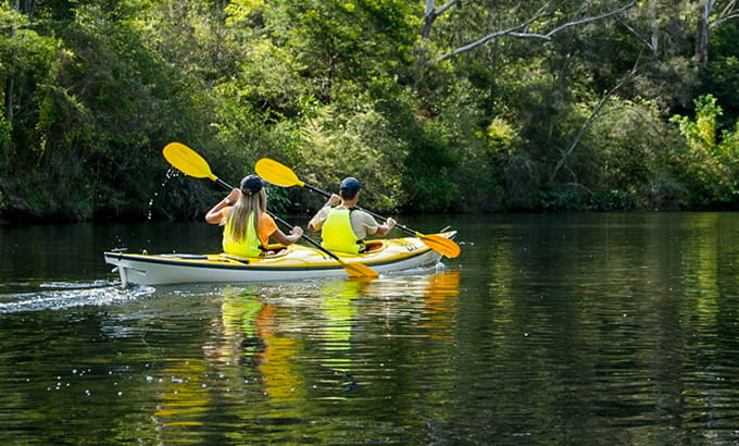 2 people in a double kayak paddling on Lane Cove River in Lane Cove National Park. Photo: Daniel Parsons/DPIE
