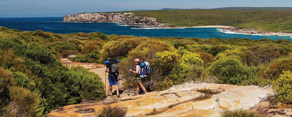 Two hikers walk the Coast track, near Eagle Rock, in Royal National Park. Photo: David Finnegan/DPIE