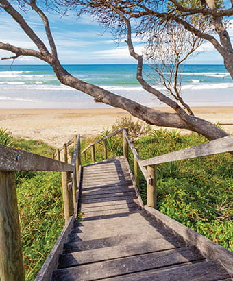 Timber steps to beach, Illaroo North campground, Yuraygir National Park. Photo: Rob Cleary/OEH