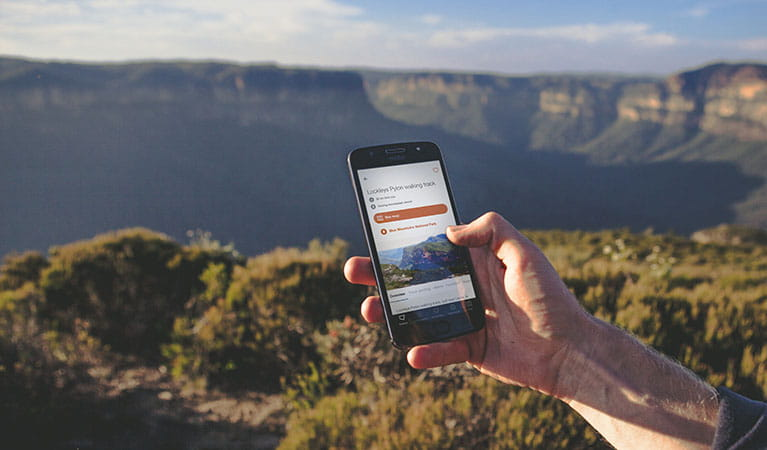 Visitor using app in Blue Mountains National Park. Photo: Daniel Parsons/Caravel Content