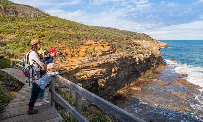 Family whale watching in Bouddi National Park. Photo: John Spencer/OEH