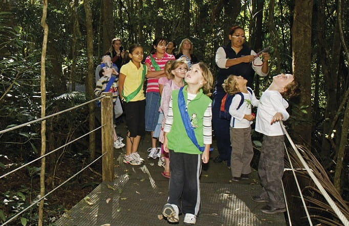A group of children with an NPWS ranger on the Sea Acres Rainforest boardwalk, Sea Acres National Park. Photo: OEH