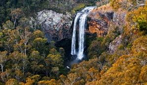 View of Ebor Falls in Guy Fawkes River National Park. Photo: Liam Hardy/OEH