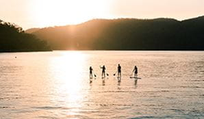 Group of friends stand-up paddle boarding on the water at Ku-ring-gai Chase National Park. Photo: Tim Clark/DPIE