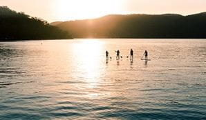 Silhouette of 4 paddle boarders, Amercia Bay, Ku-ring-gai Chase National Park. Photo: Tim Clark/OEH