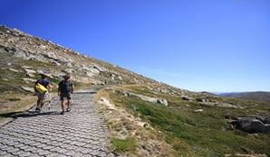Two hikers walk up Mount Kosciuszko summit track, Kosciuszko National Park. Photo: Elinor Sheargold/OEH