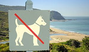 Sign prohibiting dogs set against a sweeping coastal vista of beaches and headlands. Image credit: John Spencer © DPIE
