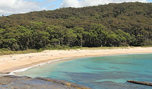 People swimming at Depot Beach, Murramarang National Park. Photo: J Yurasek/OEH