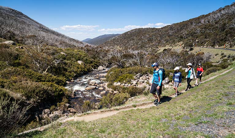 A family walk beside the Thredbo River at the start of Dead Horse Gap walking track, Kosciuszko National Park. Photo: Robert Mulally/DPIE