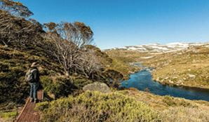 A walker on Illawong walk in Kosciuszko National Park. Photo: Murray van der Veer