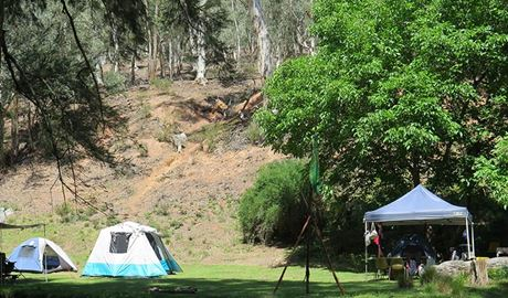 Tents pitched at Abercrombie Caves campground, Abercrombie Karst Conservation Reserve. Photo: Stephen Babka/OEH