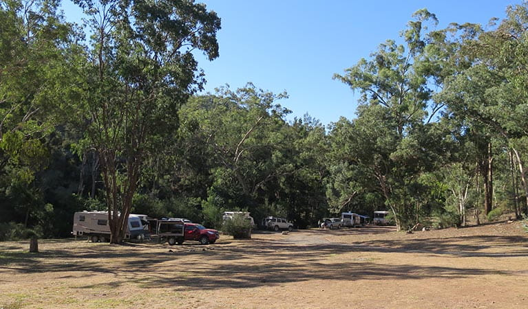 Caravans, cars and camper trailers at Abercrombie Caves campground. Photo: Stephen Babka/DPIE