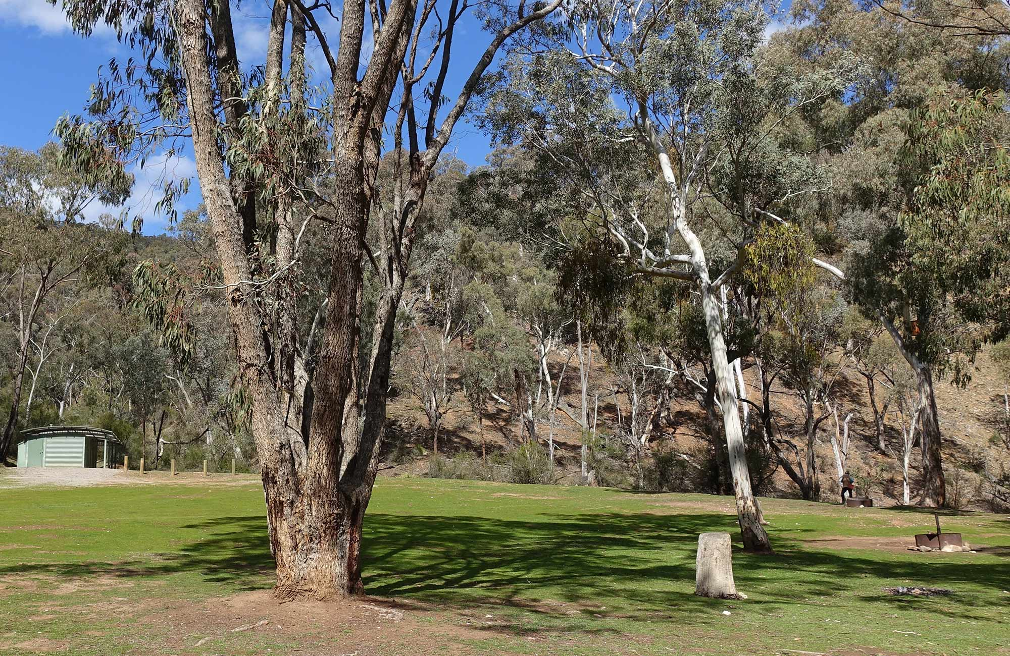 Amenities block and grassy campsites at Abercrombie Caves campground. Photo: Stephen Babka/DPIE