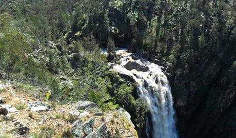 Grove Creek Falls Walk, Abercrombie Karst Conservation Reserve. Photo: OEH/NSW Government