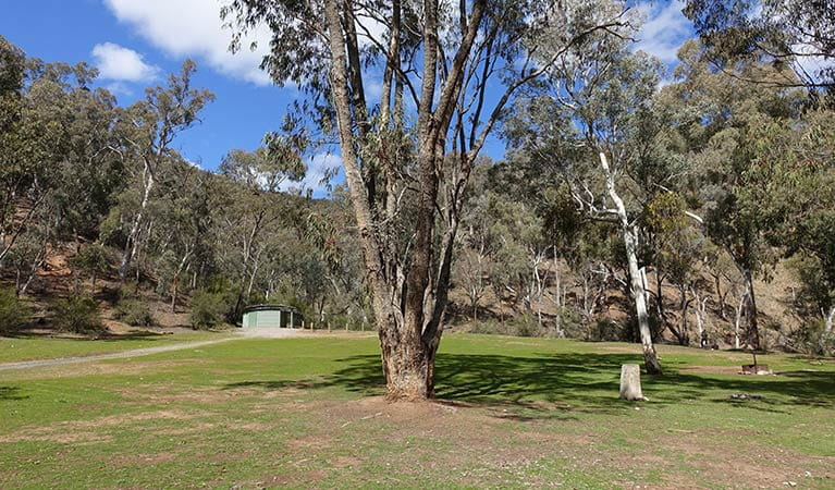 Grassy campsites near amenities block, Abercrombie Caves campground. Photo: Stephen Babka/DPIE