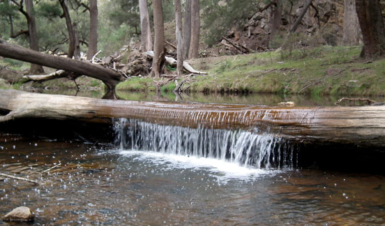 Abercrombie River, Abercrombie National Park. Photo: NSW Government
