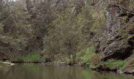 The Beach campground, Abercrombie River National Park. Photo: NSW Government