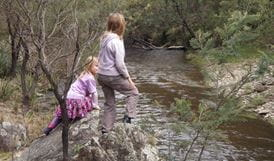 Retreat River, Abercrombie River National Park. Photo: NSW Government