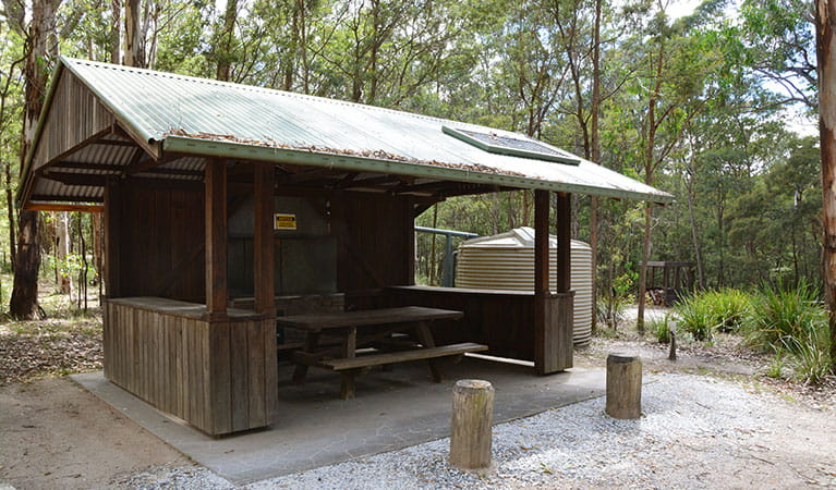 Undercover barbecue area at Bald Rock campground, Bald Rock National Park. Photo: Ann Richards