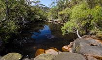 Stone Bridge, Griffiths trail, Barren Grounds Nature Reserve. Photo: John Spencer/NSW Government