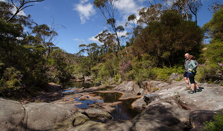 Stone Bridge, Barren Grounds Nature Reserve. Photo: John Spencer/NSW Government