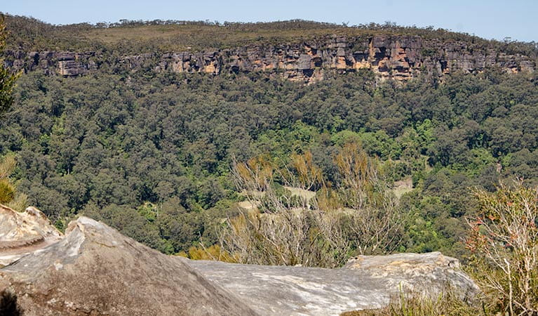Cooks Nose lookout walk, Barren Grounds Nature Reserve. Photo: John Spencer/NSW Government
