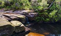Barren Grounds Nature Reserve, Stone Bridge. Photo: John Spencer/NSW Government