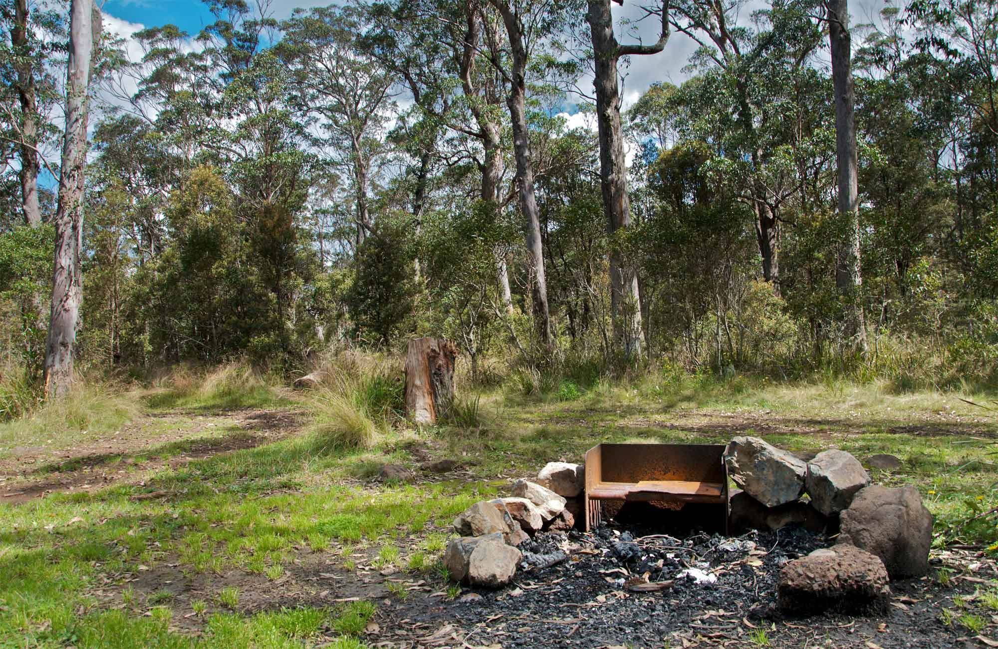 Devils Hole campground, Barrington Tops National Park. Photo: John Spencer/NSW Government