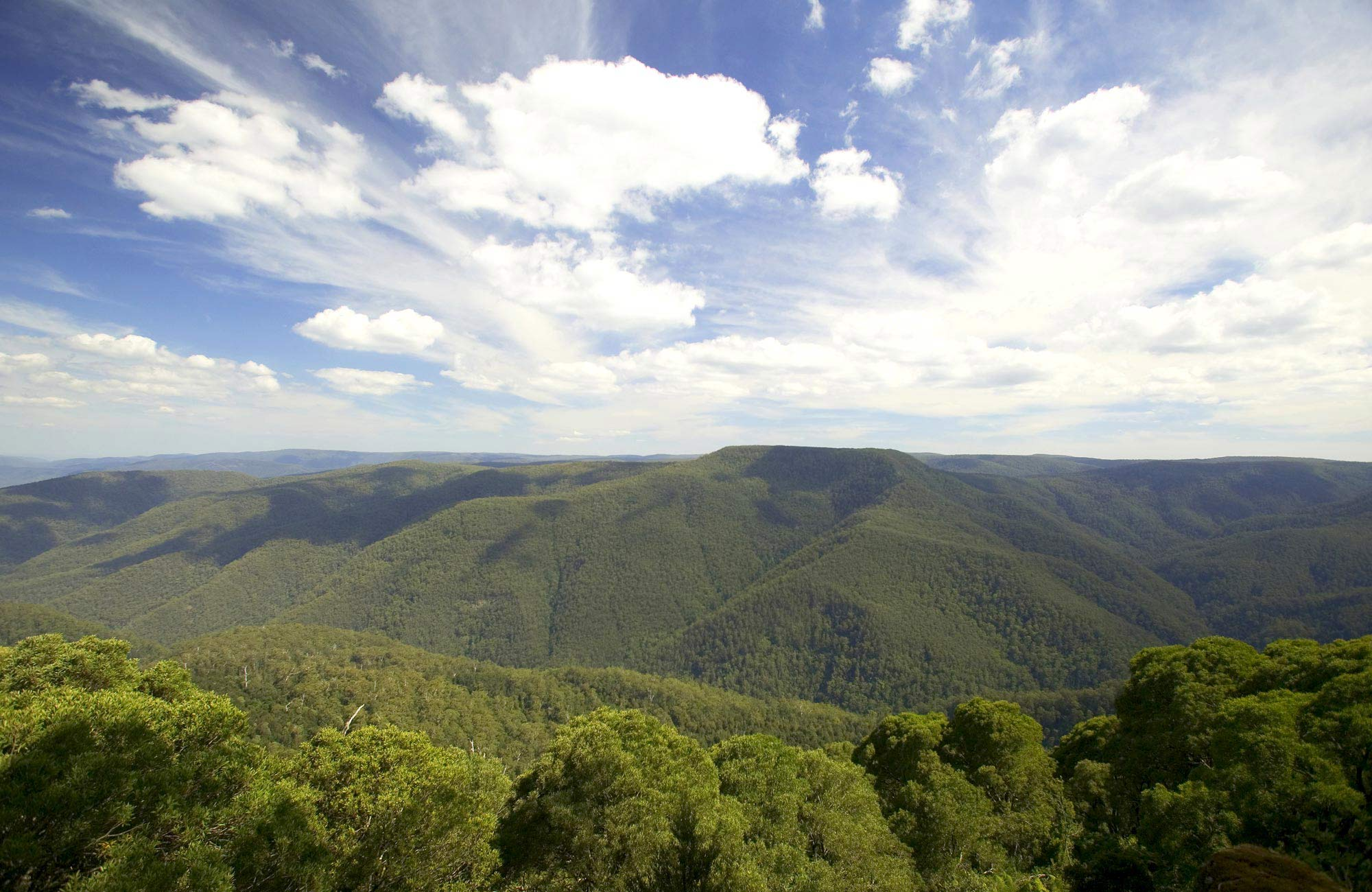 View from Thunderbolt's lookout, Barrington Tops National Park. Photo: Hamilton Lund