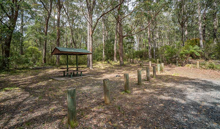 A covered picnic table at Cobark Park picnic area in Barrington Tops National Park. Photo: John Spencer © DPIE
