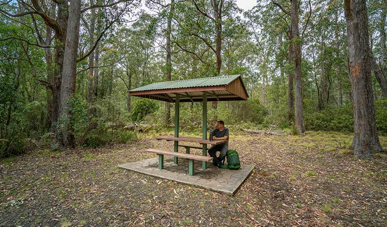 A man resting at a covered picnic table in Cobark Park picnic area, Barrington Tops National Park. Photo: John Spencer © DPIE