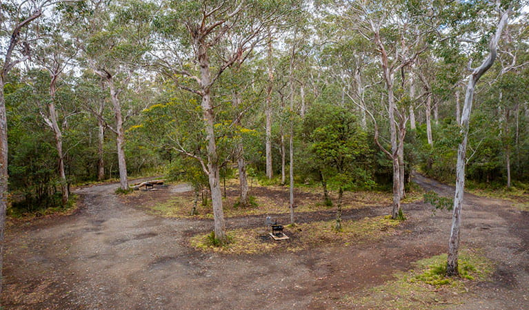 Low aerial view of Devils Hole campground in Barrington Tops National Park. Photo: John Spencer/DPIE