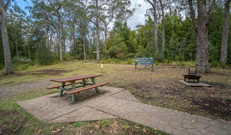 A picnic table, wood barbecue and signage at Devils Hole lookout, walk and picnic area in Barrington Tops National Park. Photo: John Spencer/DPIE