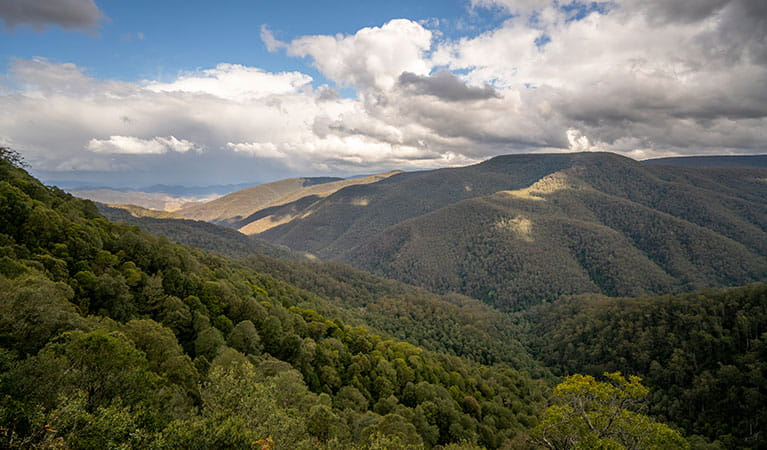 The view from Devils Hole lookout platform in Barrington Tops National Park. Photo: John Spencer/DPIE