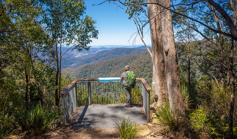 A man on a lookout platform on Gloucester Falls walking track in Barrington Tops National Park. Photo: John Spencer/DPIE