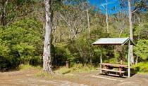 Gloucester Tops picnic area, Barrington Tops National Park. Photo: John Spencer