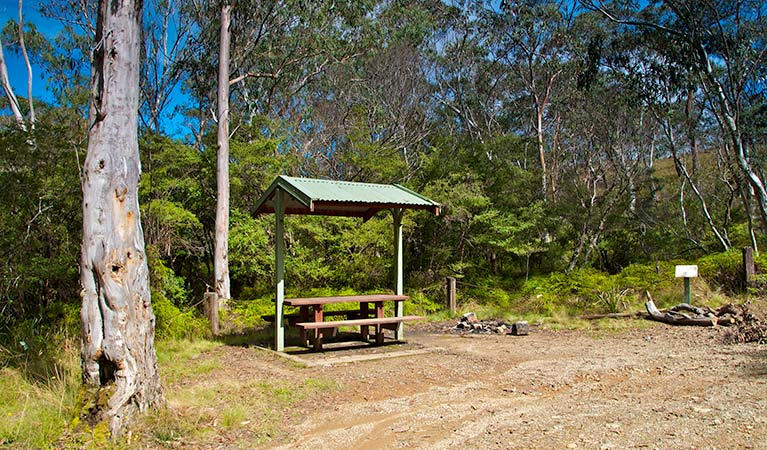 Park bench and shelter, Gloucester Tops picnic area, Barrington Top National Park. Photo:John Spencer Copyright:NSW Government