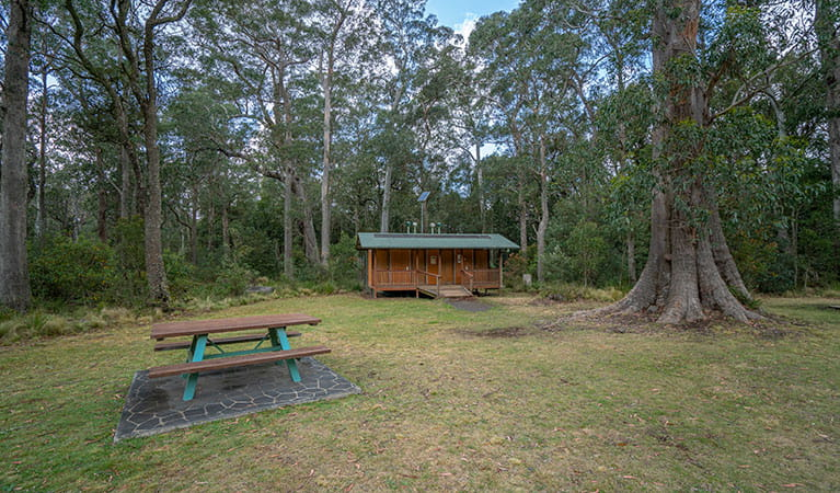 A picnic table and toilet facilities at Honeysuckle picnic area in Barrington Tops National Park. Photo: John Spencer/DPIE