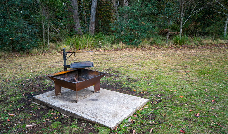 A wood barbecue in Honeysuckle picnic area, Barrington Tops National Park. Photo: John Spencer/DPIE