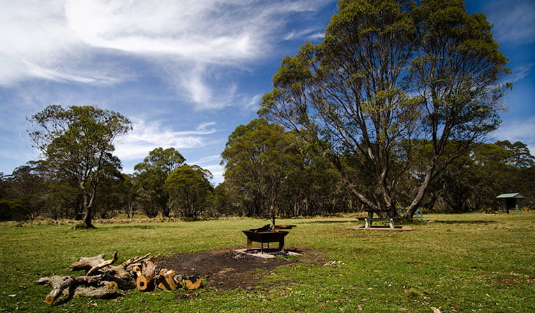Little Murray campground, Barrington Tops National Park. Photo: John Spencer/NSW Government