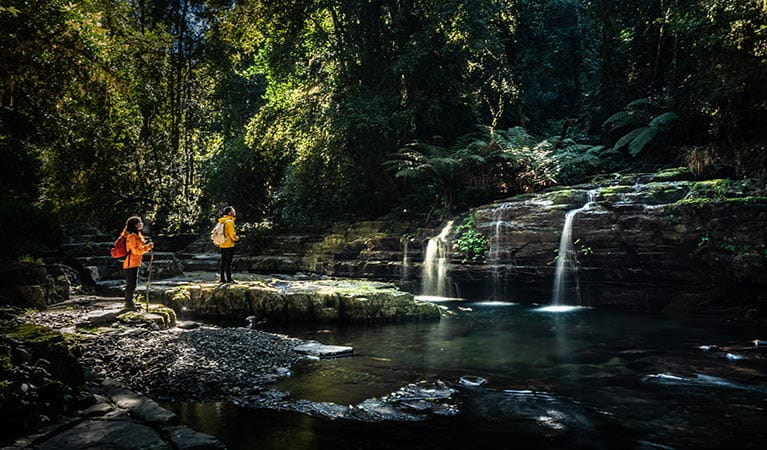 A man and woman stand by a creek waterfall along Rocky Crossing walking track in Barrington Tops. Photo: Robert Mulally/OEH