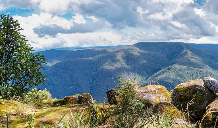View of mountains and valleys from Thunderbolt's lookout, Barrington Tops National Park. Photo: John Spencer/OEH