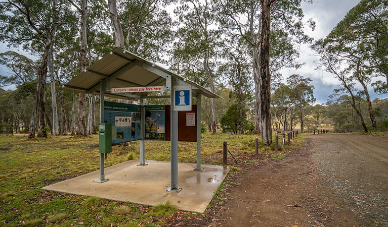 Polblue campground and picnic area information and pay station in Barrington Tops National Park. Photo: John Spencer/DPIE